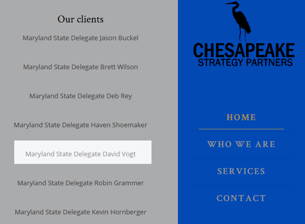 Chesapeake Strategy Partners screen capture