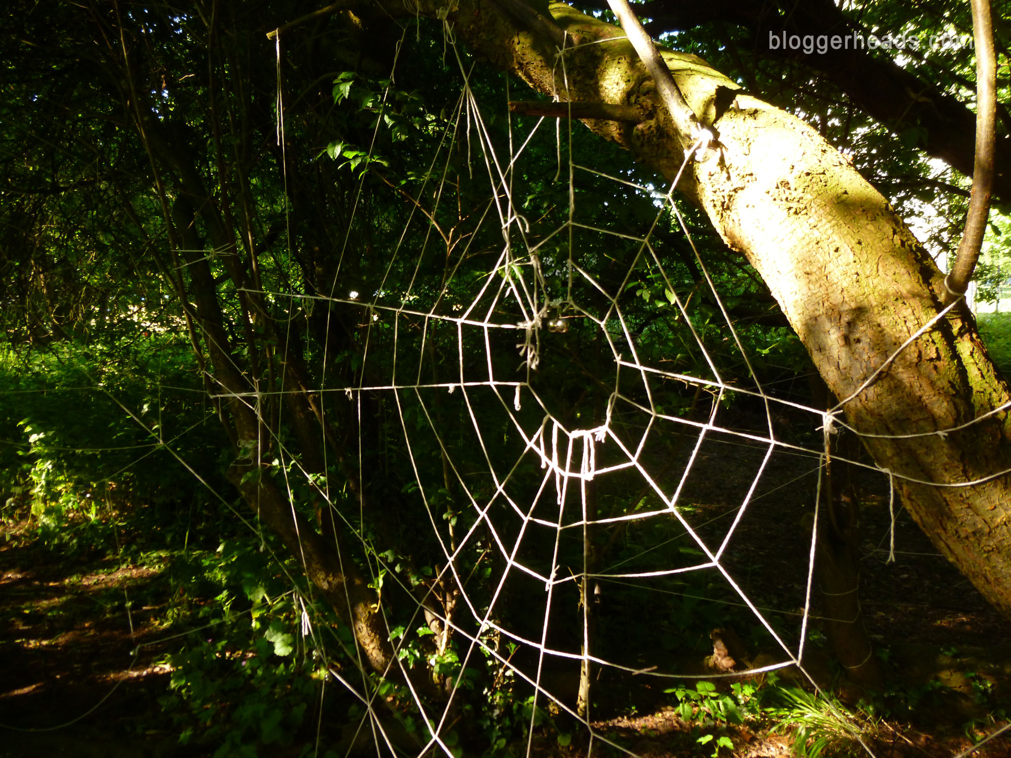 Spider Web Obstacle 3