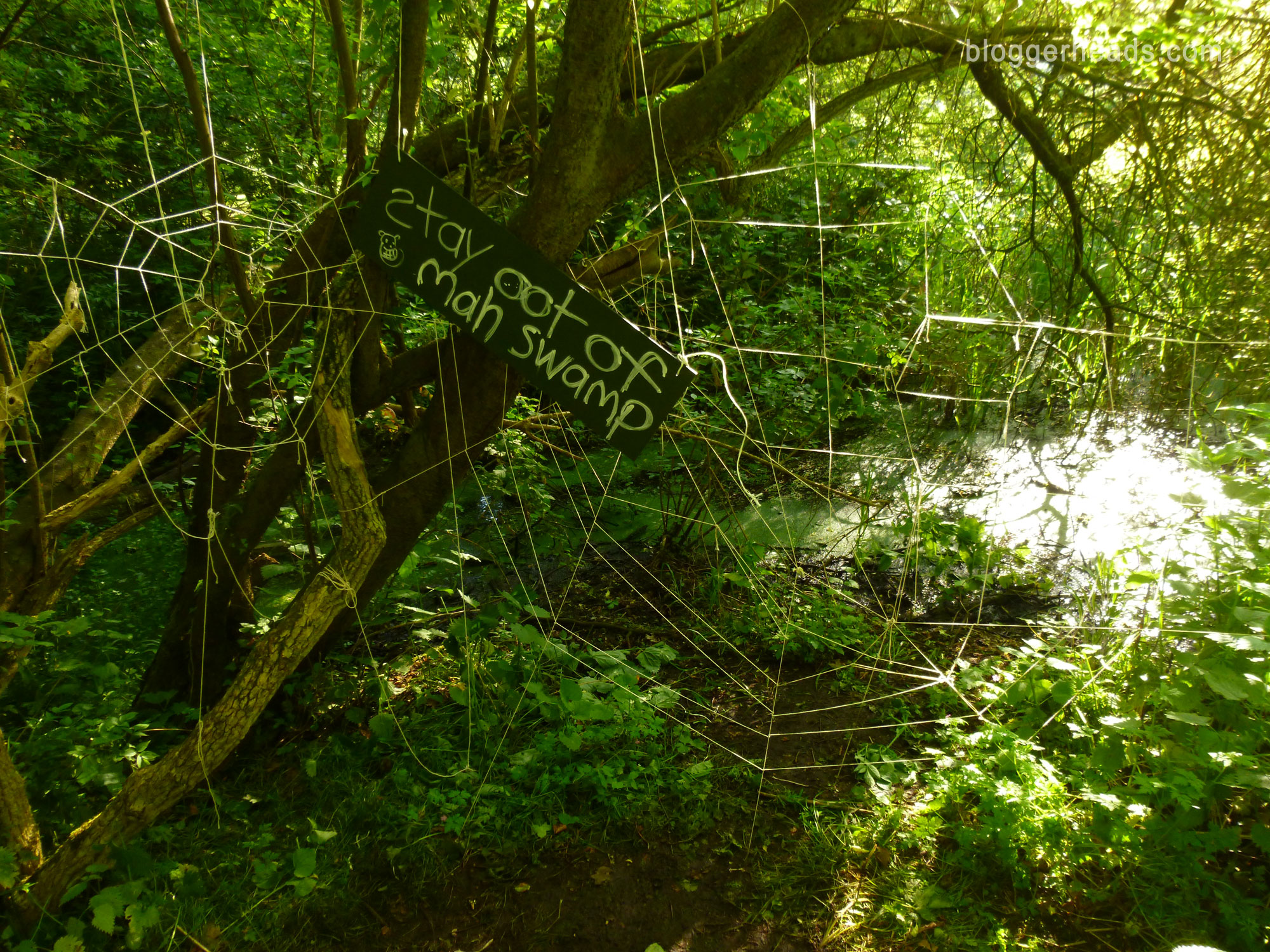 Shreks Swamp  Spider Web Obstacle