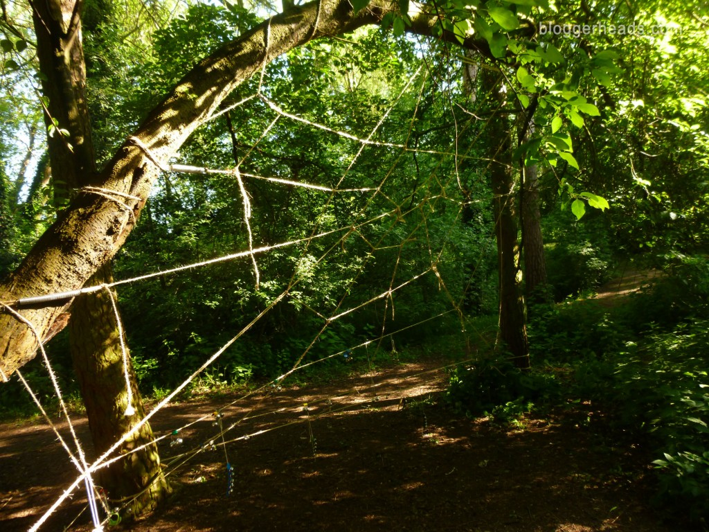 Rope Spider Web Obstacle