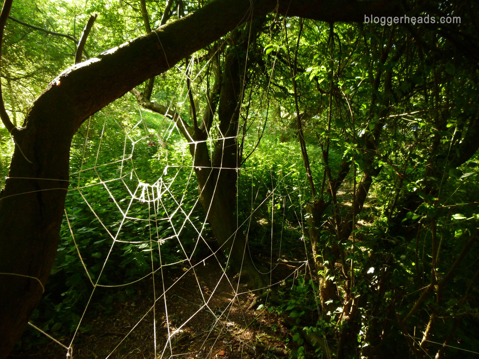 Detail Spider Web Obstacle