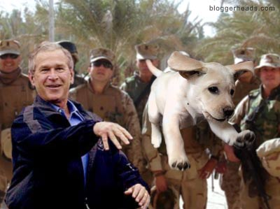 U.S. Marines watching George W. Bush throwing a puppy in Iraq - THIS REALLY HAPPENED, PEOPLE!