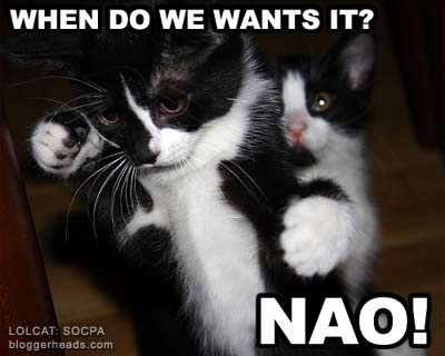 LOLCAT: hat do we want?