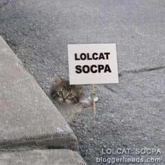 LOLCAT: SOCPA