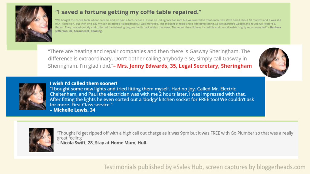 A sample of eSales Hub testimonials