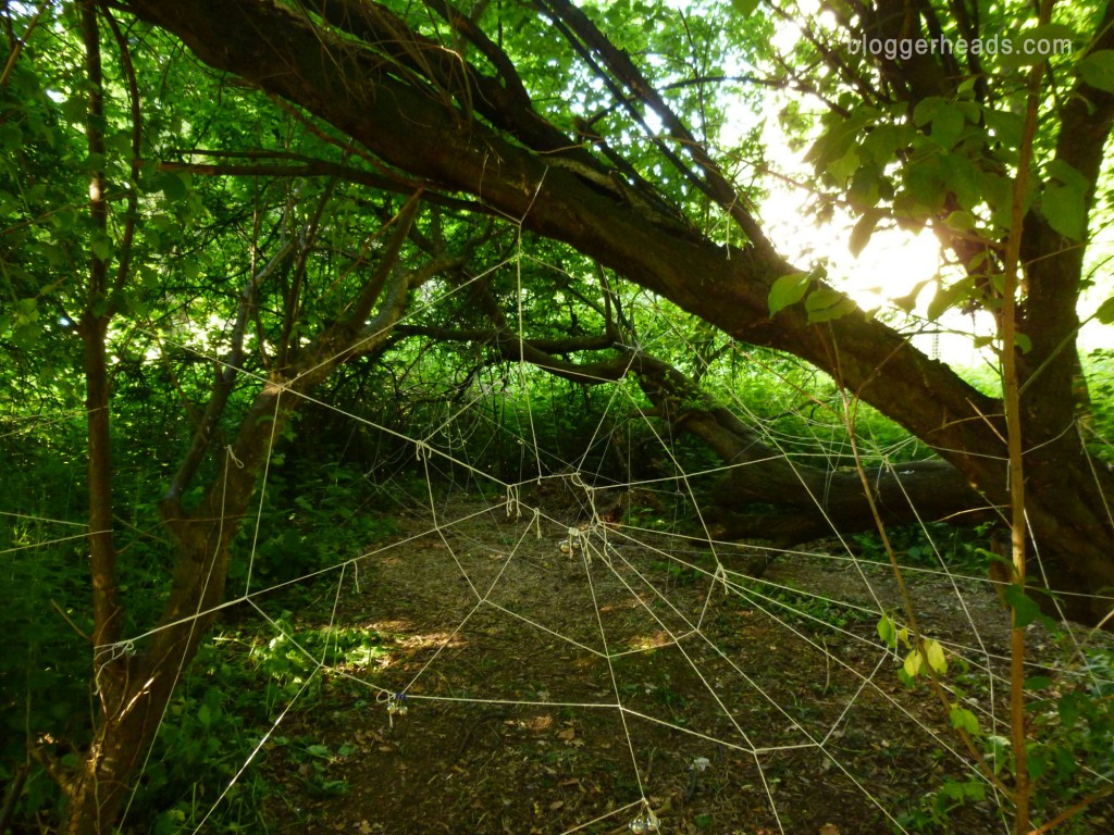 Spider Web Obstacle 2