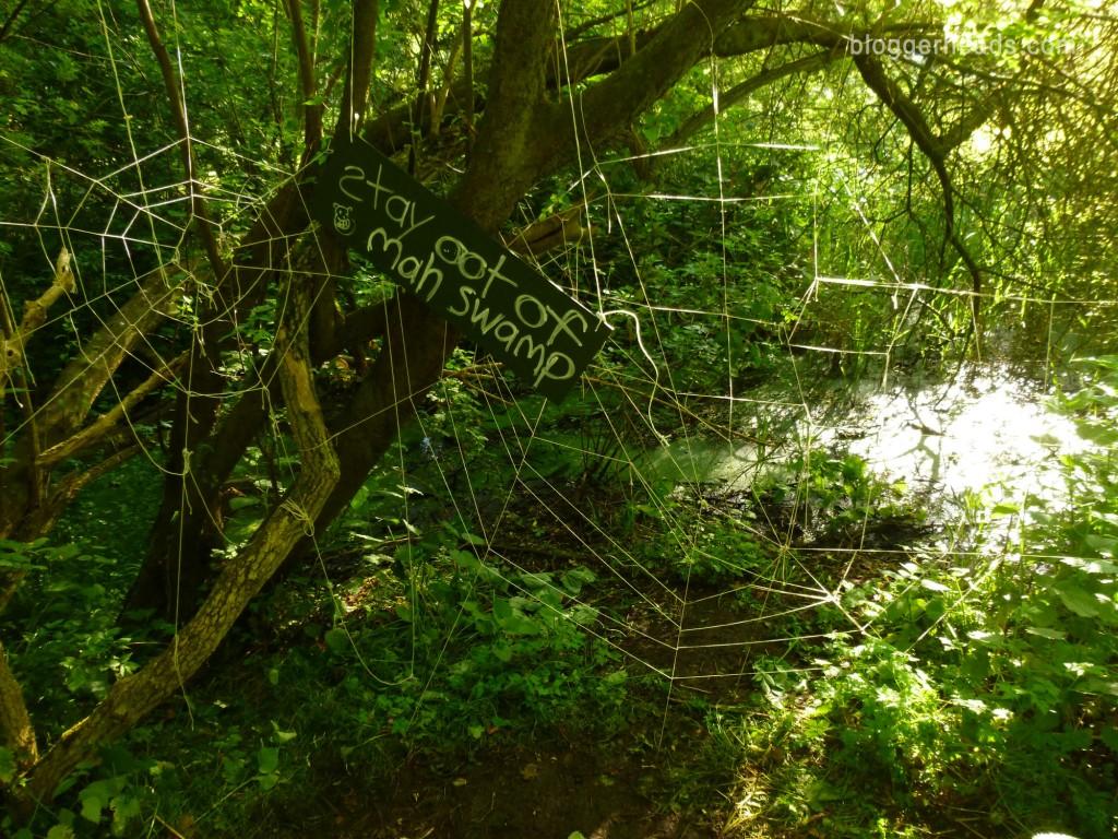 Shrek's Swamp - Spider Web Obstacle