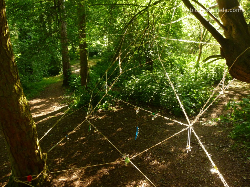 Rope Spider Web Obstacle 2